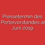Pressetermin des SPD-Parteivorstandes am 03. Juni 2019
